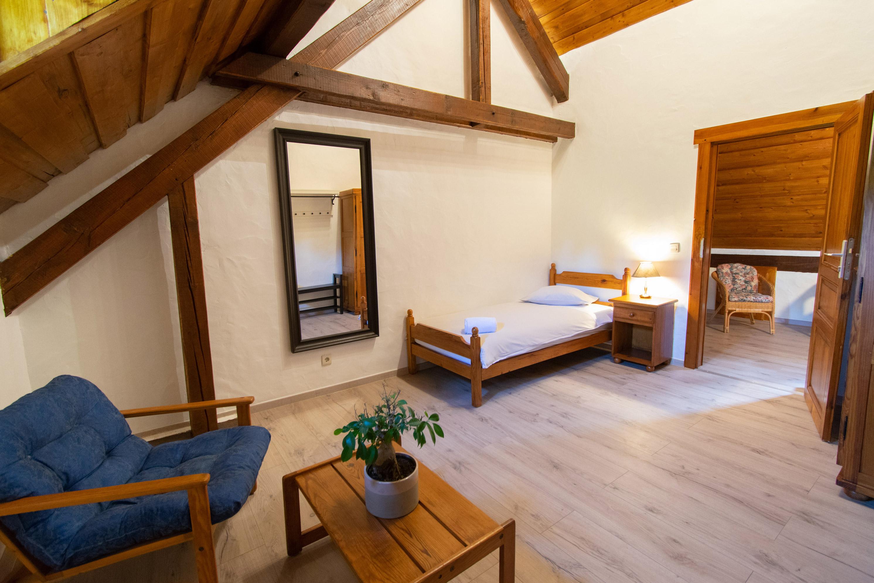 Domaine du Moulin d'Asselborn: Single Room